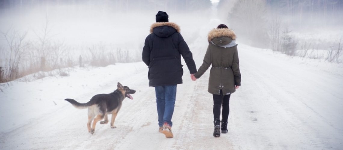 Couple_neige_chien_route_chemin_778633399